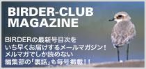 mail_magazineBLOG.jpg